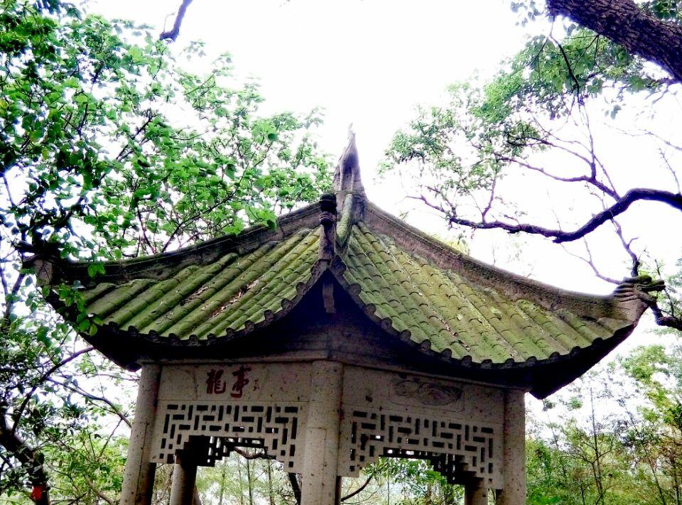 苔藓斑驳的龙亭.jpg
